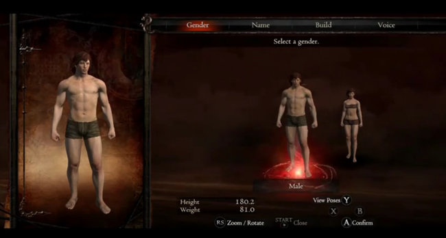Dragon's Dogma Character Creation